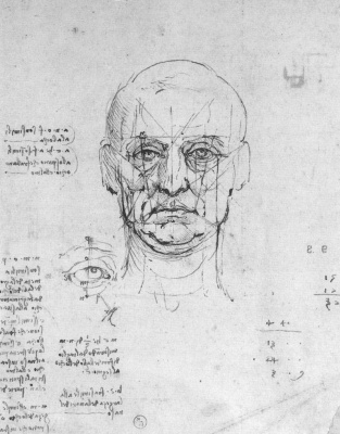 Leonardo da Vinci. The proportions of the human head and eye