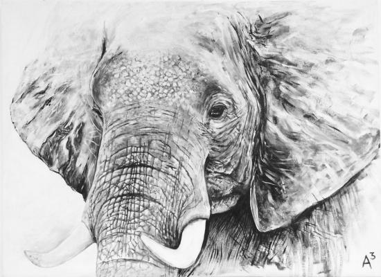 Anastasia Andreevna Ashunina. An elephant