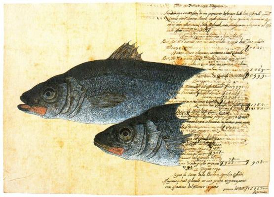Серж Дурач. Две рыбы