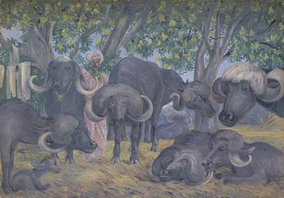 Marianna North. Buffaloes, India