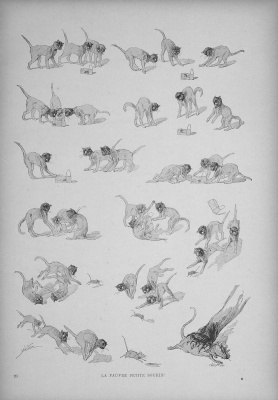 Theophile-Alexander Steinlen. Cats: pictures without words. Poor little mouse!