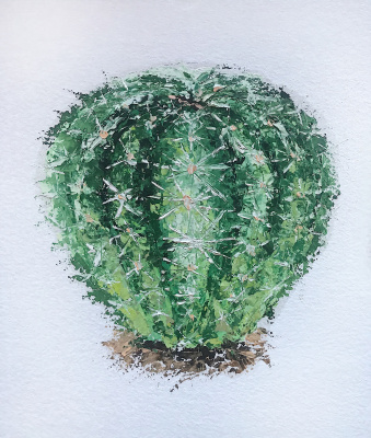 Анастасия Ораина. Cactus