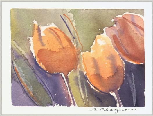 Клин Чагнон. Тюльпаны