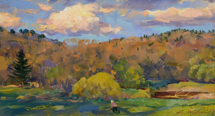 Alexander Victorovich Shevelyov. Evening landscape. D.V.P. Oil 22.5 x 42 cm. 2016