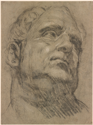 Jacopo Tintoretto. So-Called Head of Emperor Vitellius