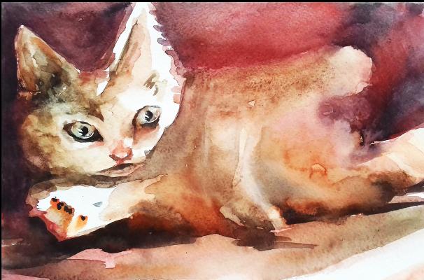 Victoria Mayorova. Sun cat
