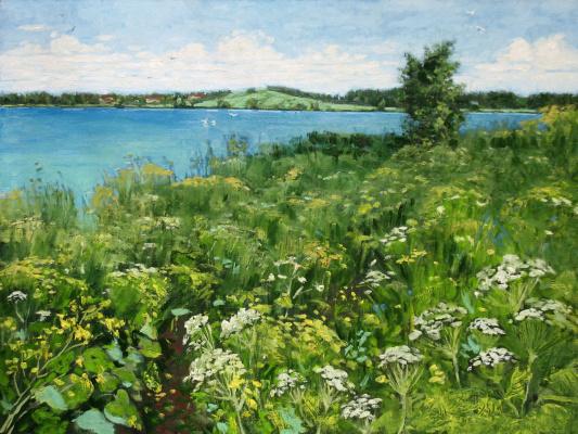 Alexander Nikolaevich Bezrodny. Path.Lake