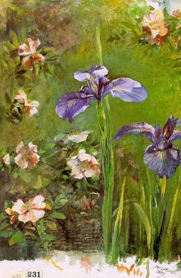 Джон Ла Фарж. Цветы