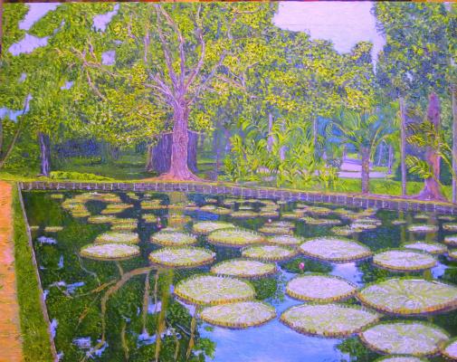 Eduard Поникаров. Pond in the Botanical garden (Mauritius)