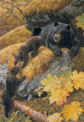 Карл Брендерс. Медведи
