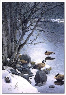 Стивен Лиман. Снег