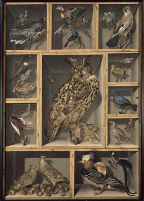 Александр-Исидор Леруа де Бард. Натюрморт с птицами