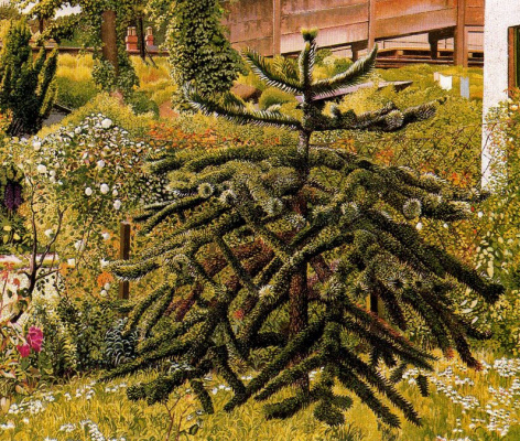 Stanley Spencer. Spruce