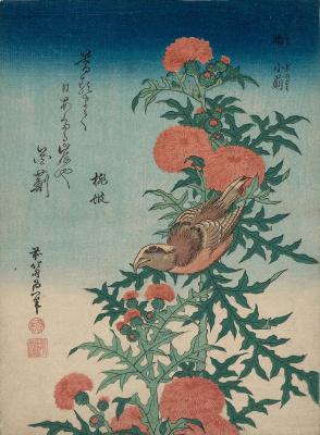 Katsushika Hokusai. Crossbill And Thistle
