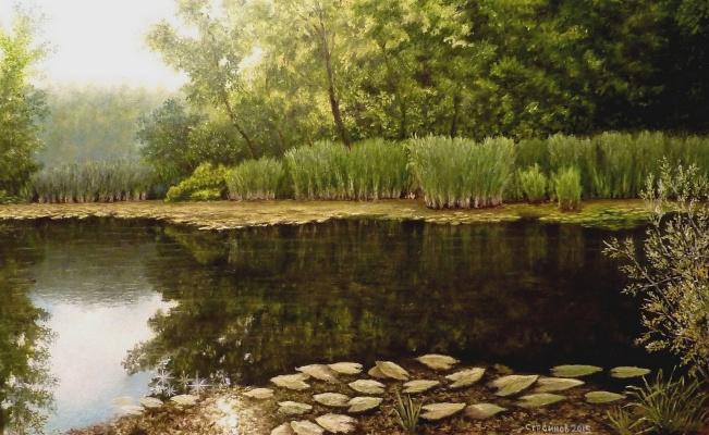 "Vitaliy Vadimovich Stroynov. "" Forest Lake."""