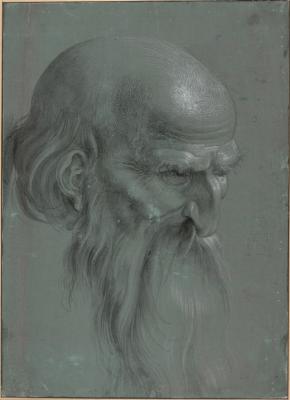 Альбрехт Дюрер. Голова апостола
