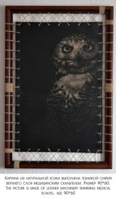 Arthur Dedkov. Opinion Owl
