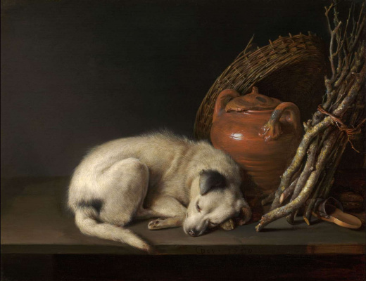 Gerrit (Gerard) Dow. Sleeping dog and a clay pot