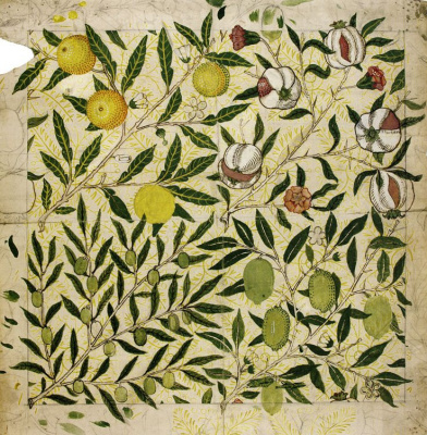 William Morris. Branches with fruit. Sketch
