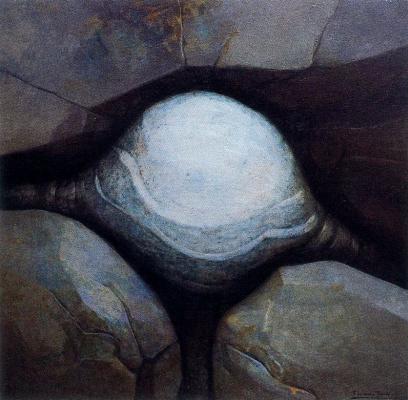 Франциско Лоренцо Тардон. Сюжет 16
