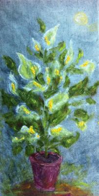 Rita Arkadievna Beckman. Flowers (women's happiness)