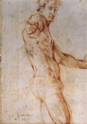 Jacopo Pontormo. Self-portrait