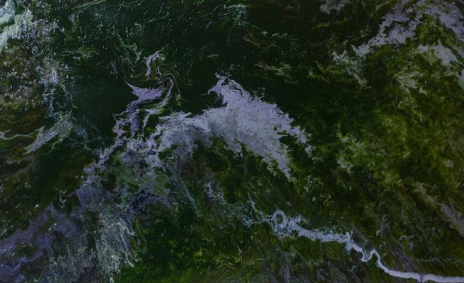 """Alla Struchayeva. Painting """"Nebula on Earth"""""""