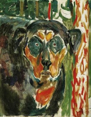 The dog's head