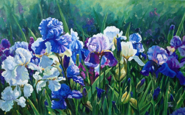 "Natalia Vladimirovna Ilyina. ""Irises illuminated by the sun"""