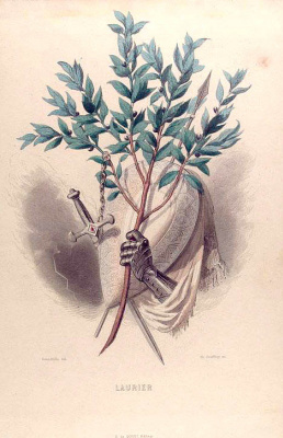 "Jean Inias Isidore (Gerard) Granville. Noble Laurels. The series ""Animate Flowers"""