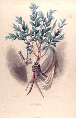 """Жан Иньяс Изидор (Жерар) Гранвиль. Благородный лавр. Серия """"Одушевленные цветы"""""""