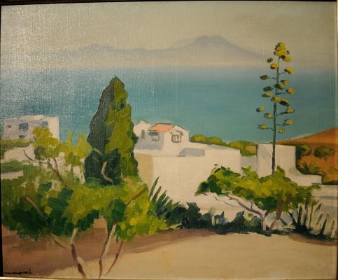 Albert Marquet. Views....