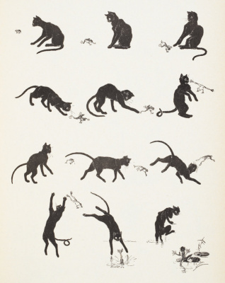 Теофиль-Александр Стейнлен. Кошки: картины без слов. Кот и лягушка
