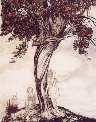 Arthur Rackham. Hawthorn Tree