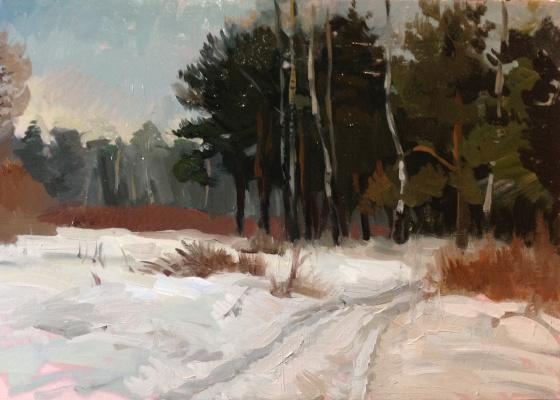 Serge katkov. In the Park in the winter