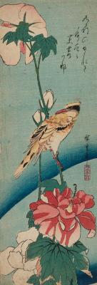 """Утагава Хиросигэ. Черноголовая иволга и цветок гибискуса. Серия """"Птицы и цветы"""""""