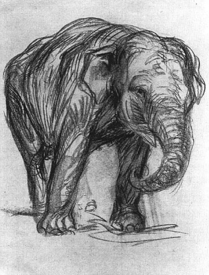 Franz Marc. Elephant