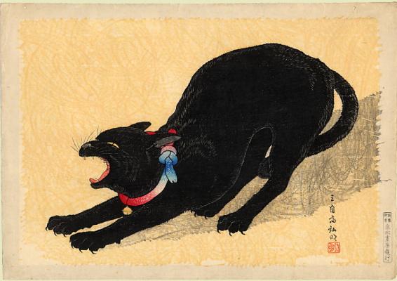 Шотеи. Черный кот