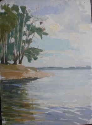 Nina Vasilievna Sedova. Lake