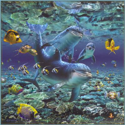 Ройс Макклюр. Дельфины 11