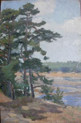 Nina Vasilievna Sedova. River