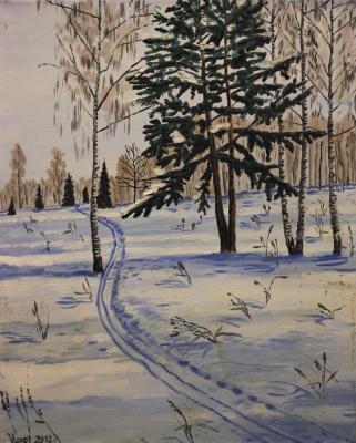 Vladimir Adamovich Ropot. Ski track