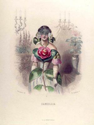 "Jean Inias Isidore (Gerard) Granville. Camellia. The series ""Animate Flowers"""