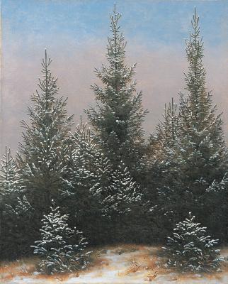 Каспар Давид Фридрих. Еловые заросли в снегу