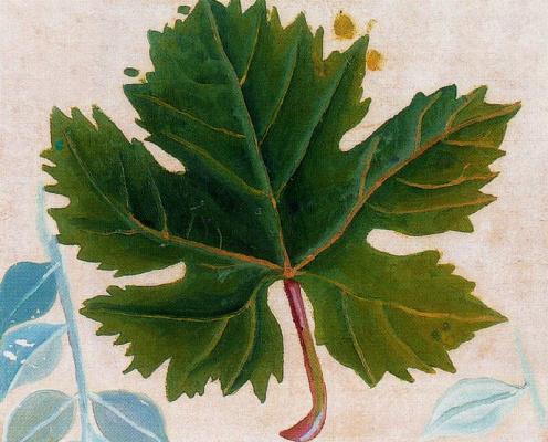 Маруджа Малло. Зеленый лист