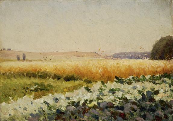 Jan Stanislavsky. Field with cabbage