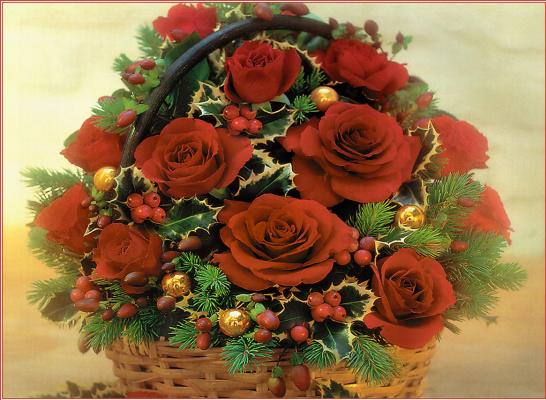 Красные розы в корзине