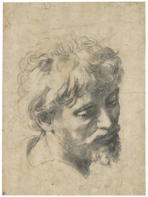 "Raphael Santi. Head of a young Apostle. The sketch for the painting ""the Transfiguration"""