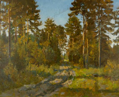 Владимир Максимович Соколов. Forest thicket