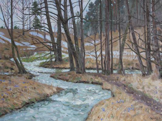 Евгений Александрович Казанцев. Spring. Forest stream.